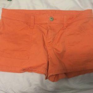 Arizona Jean Shorts